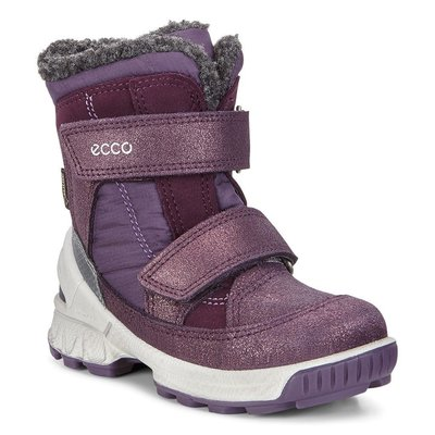 ECCO BIOM Winter Boots Gore-Tex